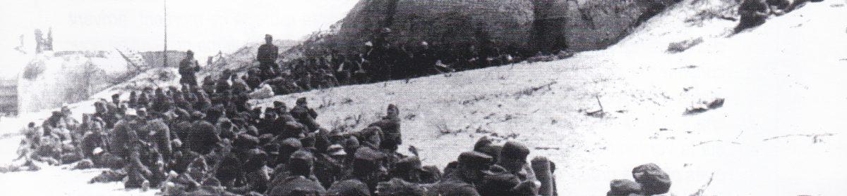Prisonniers de guerre allemands en Médoc