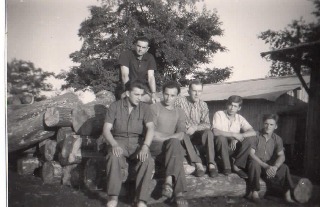 Gruppe 1 Holzplatz